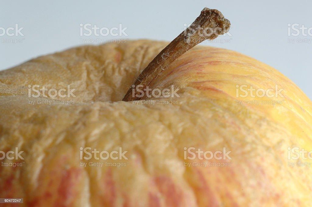 Makro mit getrockneten Verfault apple Lizenzfreies stock-foto