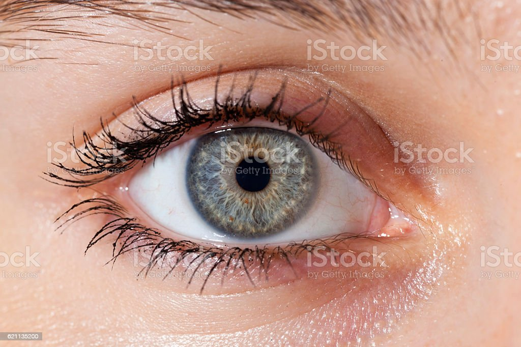 Macro view of a Blue eye stock photo