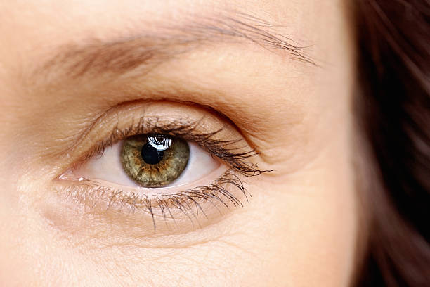 macro view of a brown eye looking at you - close to stock pictures, royalty-free photos & images