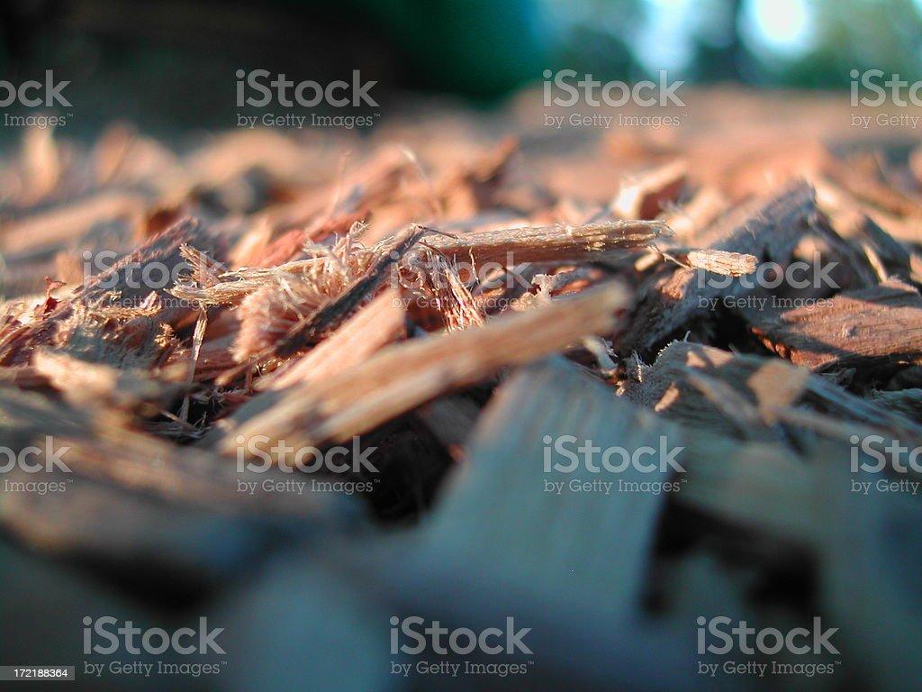 Macro - Woodchips stock photo