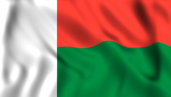 Image result for madagascar flag