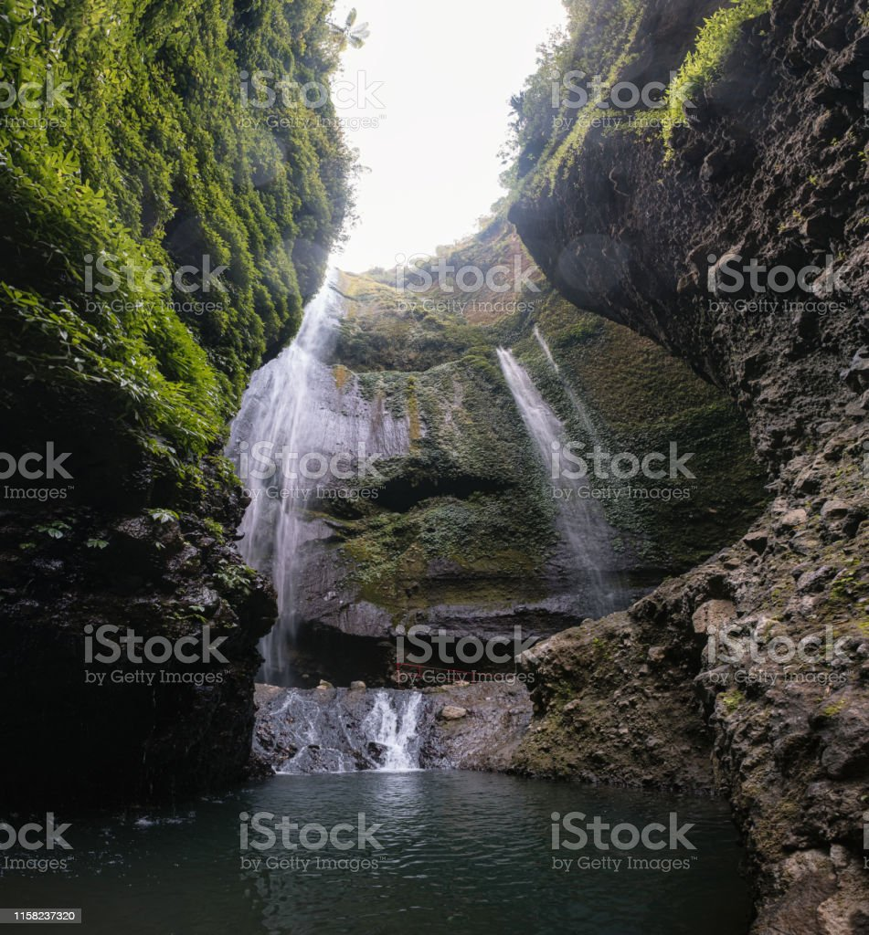 Madakaripura waterfall flowing on rock valley with plants in national...