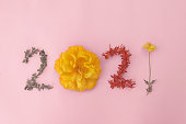 istock 2021 made from natural leaves and flowers on pink background, Happy New Year wellness and healthy lifestyle 1280969925