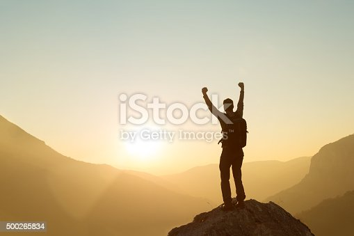 istock Made It To The Top! 500265834