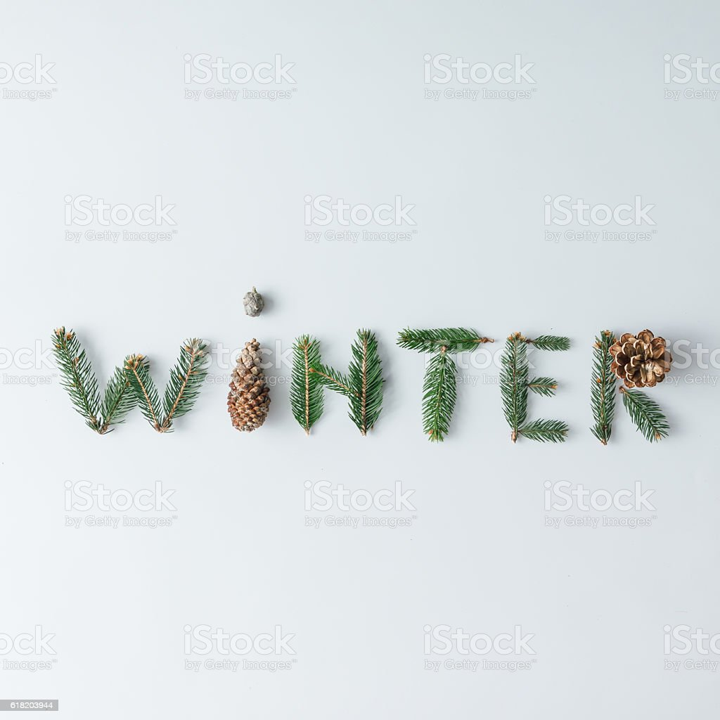 'WINTER' made of tree branches and pine cones stock photo