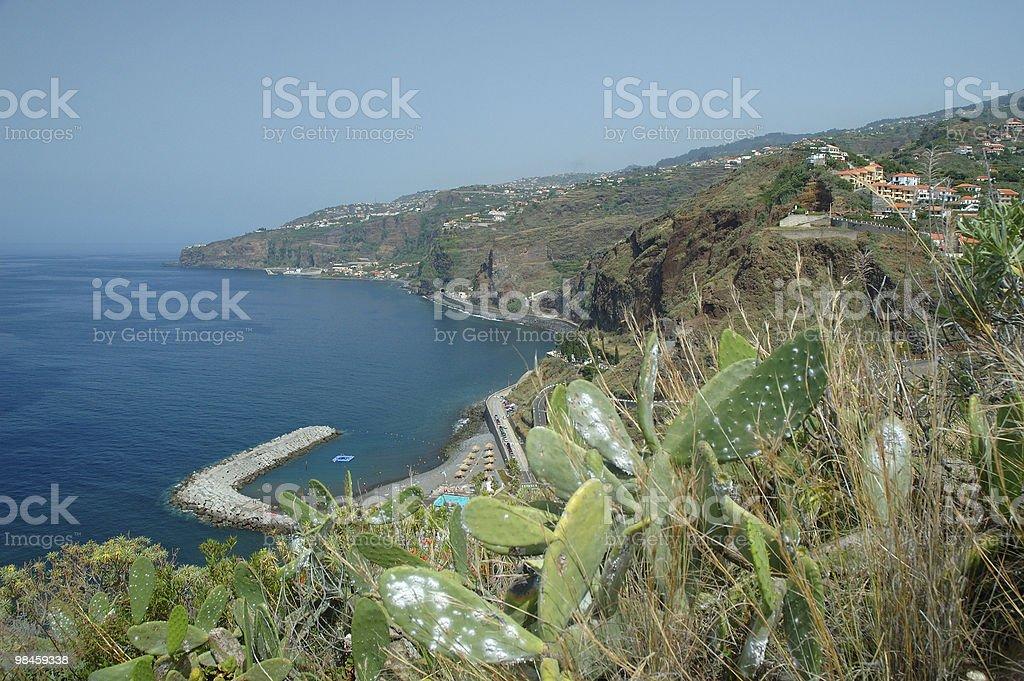 Madeira, Camara de Lobos royalty-free stock photo