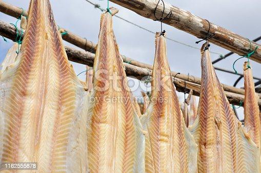 Madeira Island - Dry fish (Stockfish - dried cod) at the village Camara de Lobos