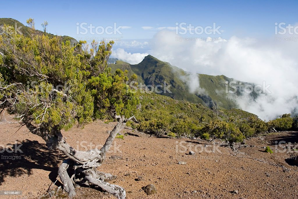 Madeira Mountains I royalty-free stock photo