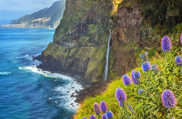 Cachoeira Bridal Veil Madeira-(Veu de Noiva) do Seixal - foto de acervo