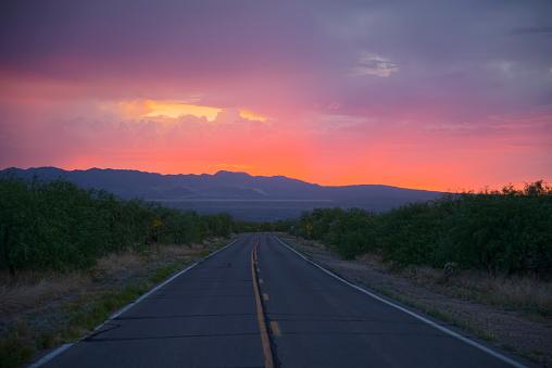 Madera Canyon Road at Sunset - II