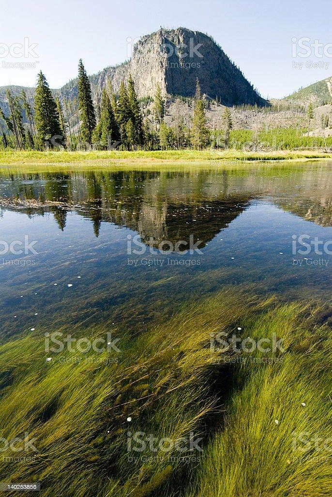 madison river Yellowstone royalty-free stock photo