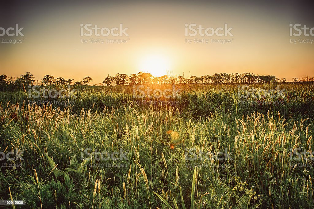 Madisonville Sunset stock photo