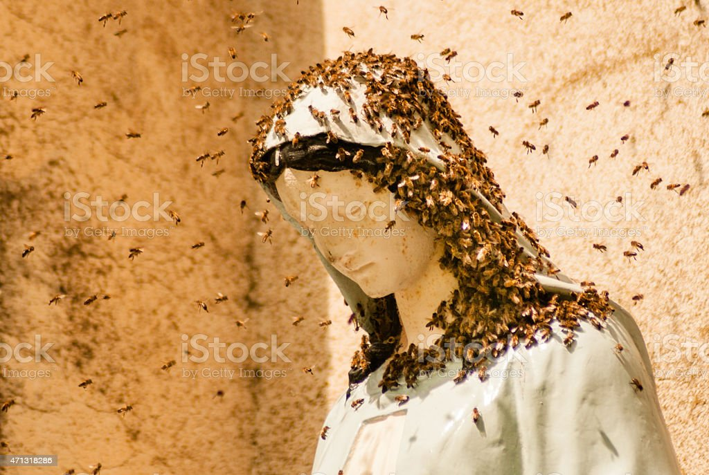 Madonna and Bees stock photo
