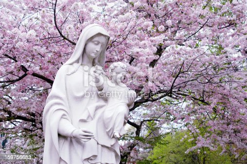 Elegant Madonna & Child Statue against a blooming cheery tree in early March at Belmont Abbey College in Belmont, NC.