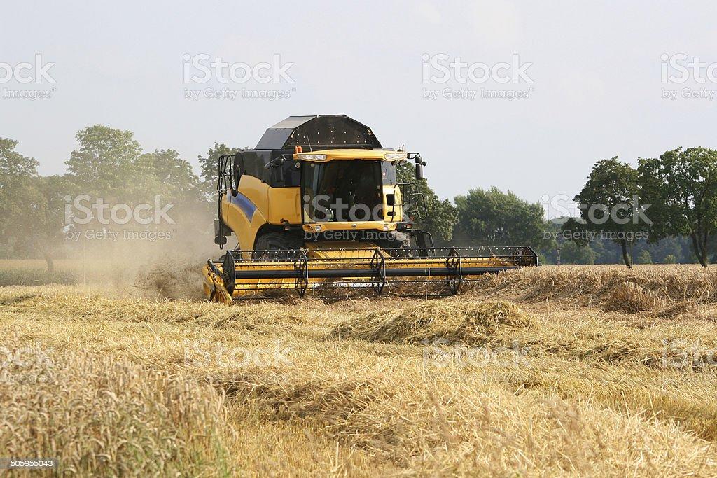 Maehdrescher auf einem Weizenfeld – Foto