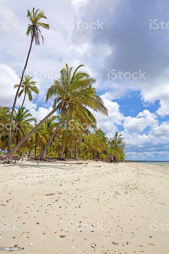 Mafia Island royalty-free stock photo