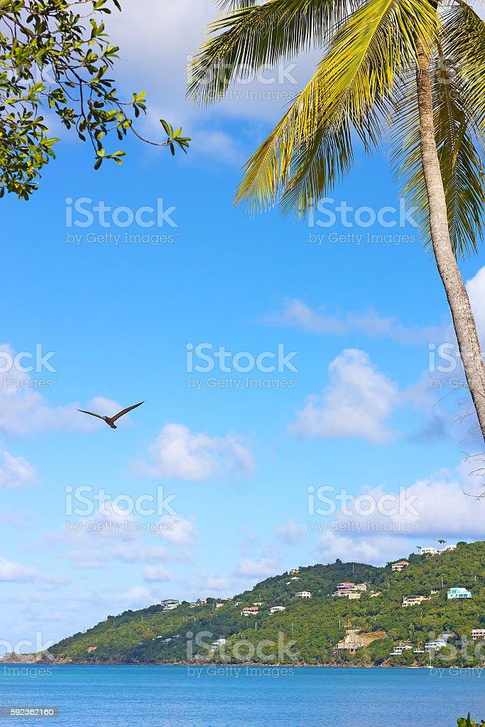 Magens Bay beach on St Thomas Island, US VI. stock photo