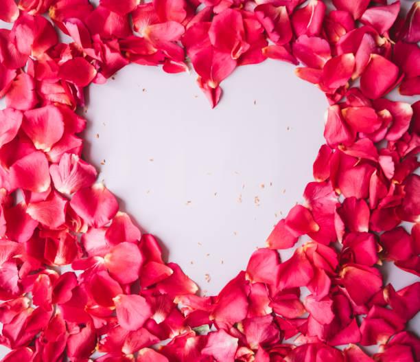 Magenta roses petals texture with a heart shaped hole in it in the picture id948654854?b=1&k=6&m=948654854&s=612x612&w=0&h=hsem99aqchdedh9ydlxhq7ehm8skmwwluv9fak8wvc0=