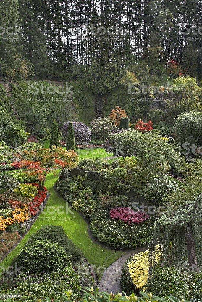 Magic labyrinth. royalty-free stock photo