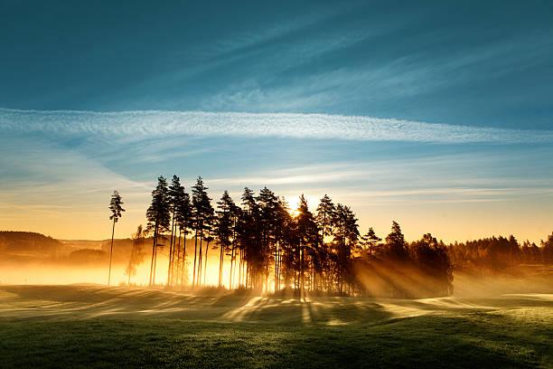 magia światła na pole golfowe - szwecja zdjęcia i obrazy z banku zdjęć