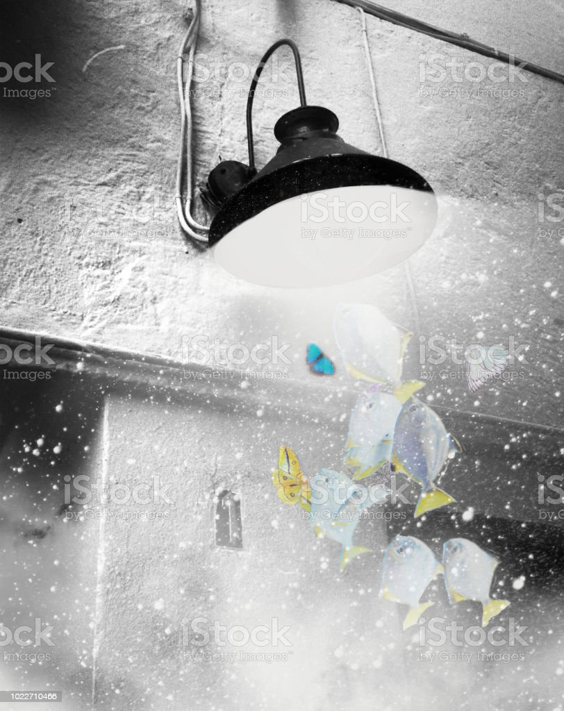 Magic light stock photo