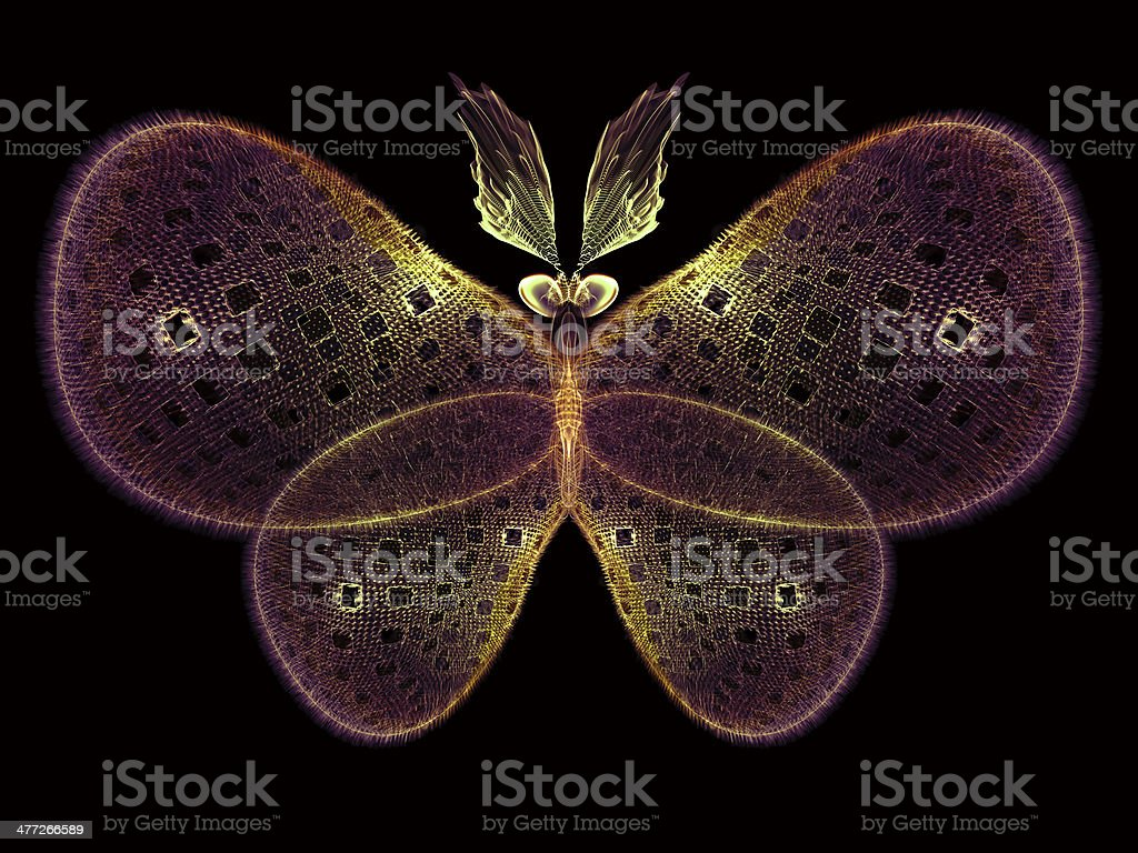 Magic of Butterfly royalty-free stock photo