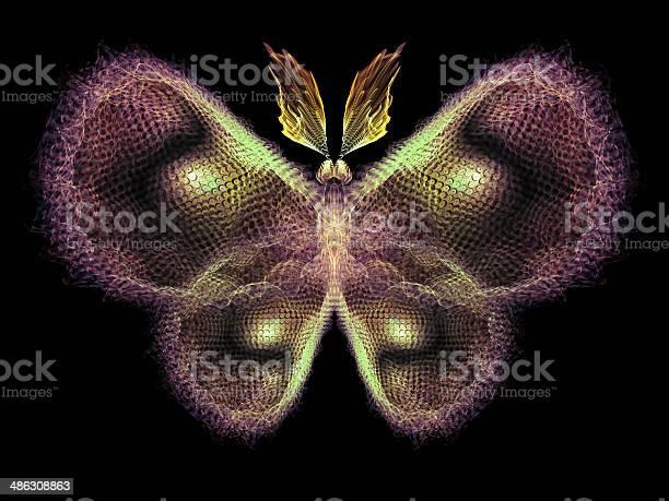 Magic of butterfly picture id486308863?b=1&k=6&m=486308863&s=612x612&h=g4nrdujov piilqhkthmcknnxjl sjtyxnvxvxwz oa=