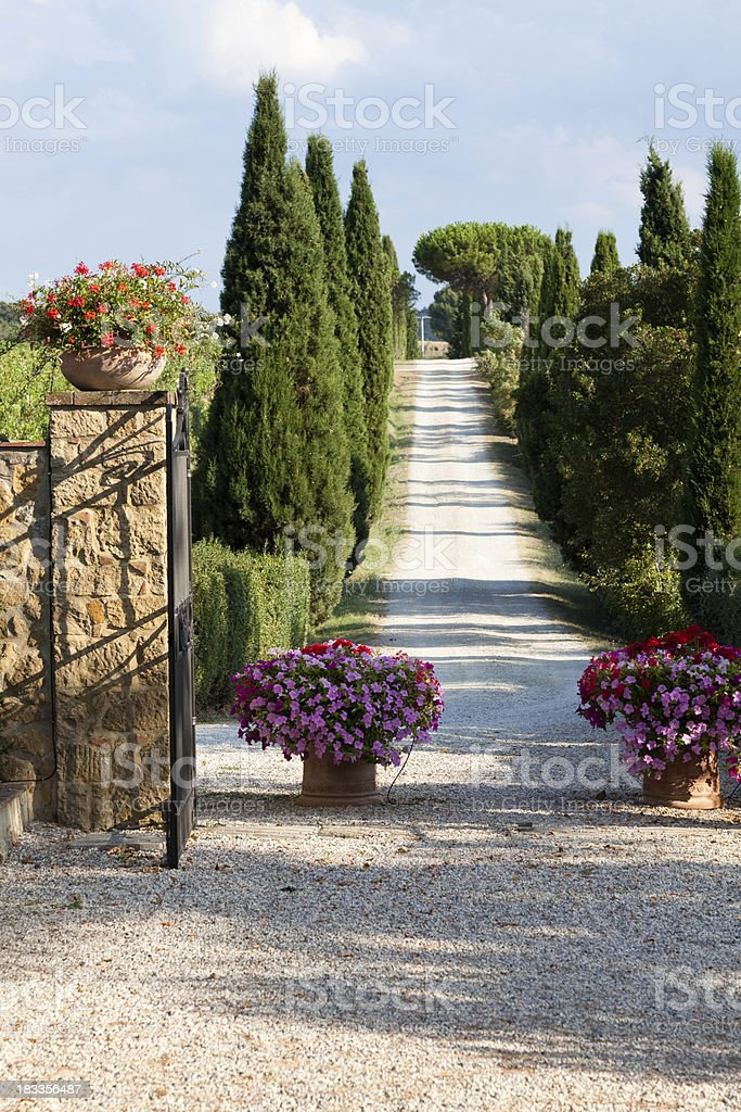 Magic road in Tuscany royalty-free stock photo