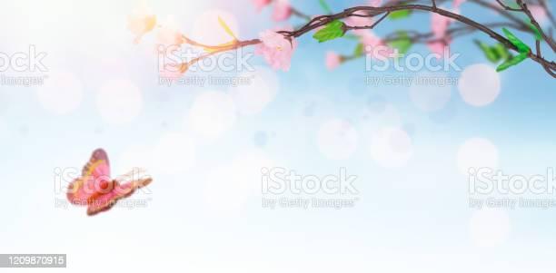 Magic spring time picture id1209870915?b=1&k=6&m=1209870915&s=612x612&h=l51zqhpqud2fa2tvcephiiuugfb3 2qhhfcfgh3i7ay=