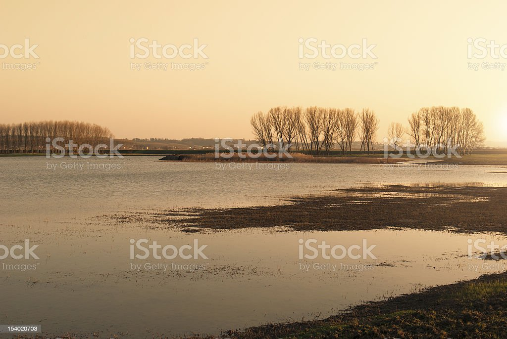 Magic swamp at sunset - Reflection on the water royalty-free stock photo