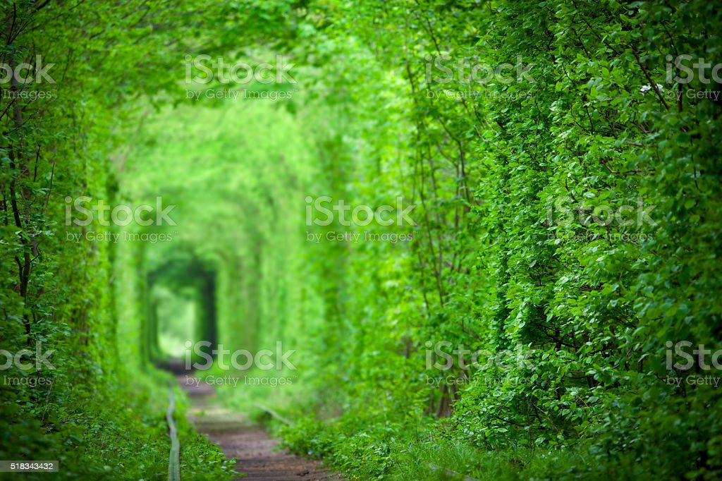 Magic Tunnel of Love, green trees and the railroad background stock photo