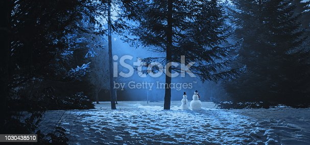 Magic winter scene in the woods with two snowmen.