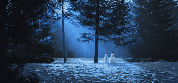 Magic winter scene in the woods with two snowmen. Magic winter scene in the woods with two snowmen. glade stock pictures, royalty-free photos & images