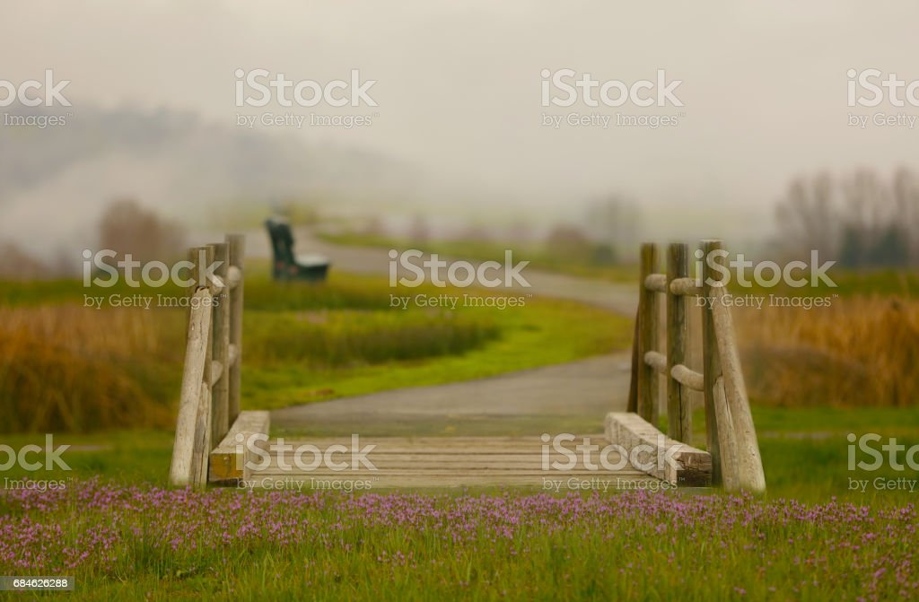 A magical bridge and pathway into the fog. stock photo
