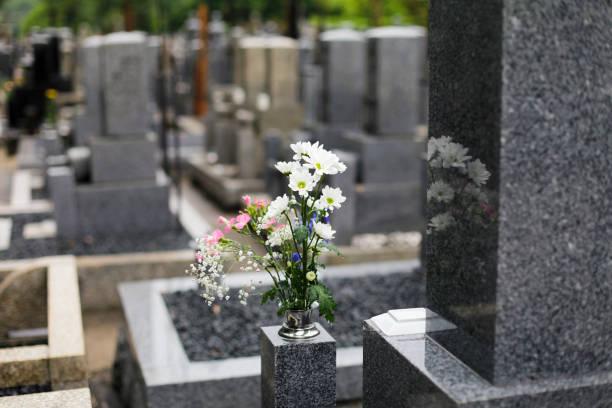 Magical Cemetery stock photo