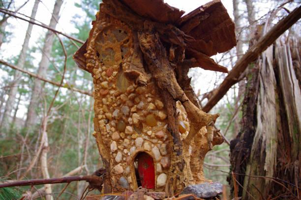 magische märchen-haus im wald. wald-wohnung der feen in den wäldern. - hobbit häuser stock-fotos und bilder