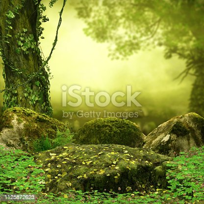istock Magical Fairy Tale Forest Opening 1125872623