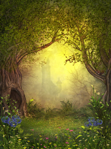 Magical Fairy Woods stock photo