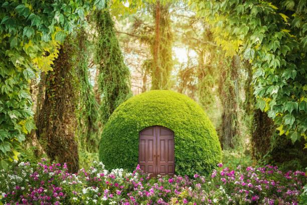 녹색 신비한 숲에서 마법의 판타지 세계. 동화 개념입니다. - 천상의 뉴스 사진 이미지