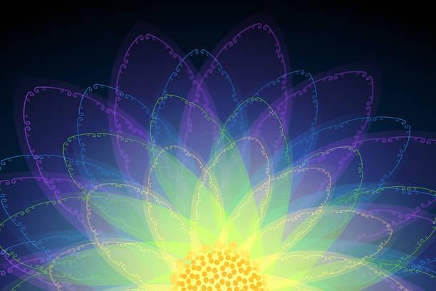 magische blume mit ornamenten - lotus zeichnung stock-fotos und bilder