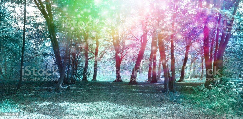 Magical Spiritual Woodland Energy Background stock photo
