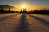 Dreamlike winter sunset with beautiful shadow play of trees. Alps, Bavaria, Germany.