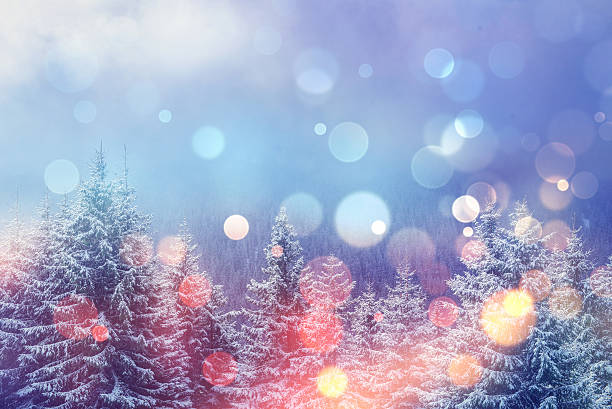magical winter landscape, - non urban scene stock photos and pictures
