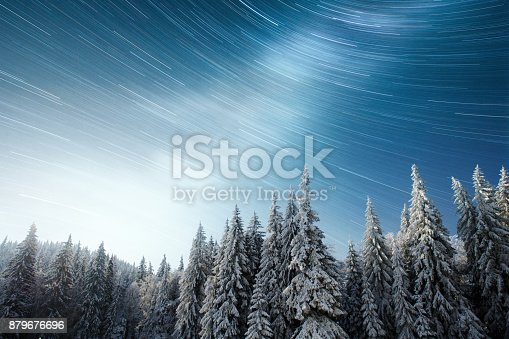 istock magical winter snow covered tree. Winter landscape. The winter lake is frozen on the front 879676696