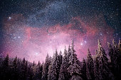 magical winter snow covered tree. Winter landscape. Vibrant night sky with stars and nebula and galaxy. Deep sky astrophoto. Elements furnished by NASA