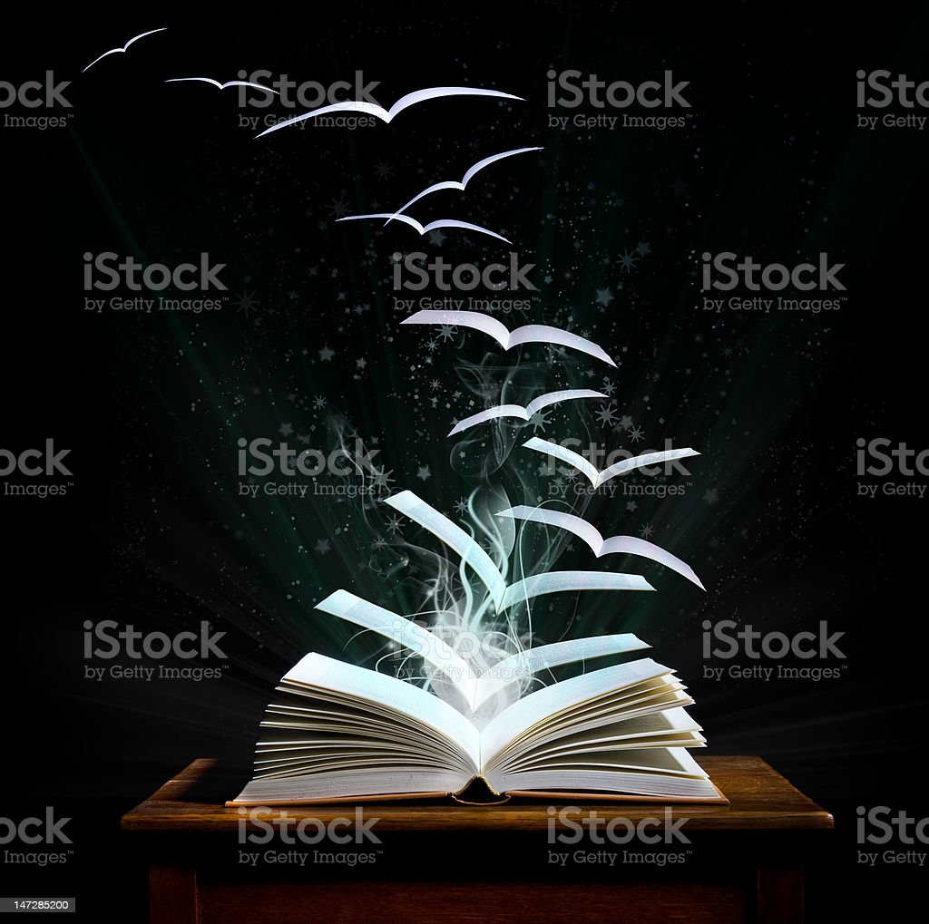 Magical world of reading                           (© Lobke Peers) royalty-free stock photo