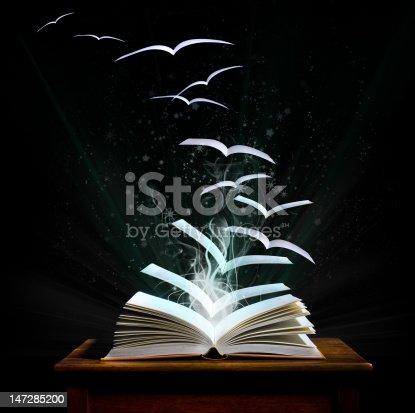 istock Magical world of reading                           (© Lobke Peers) 147285200