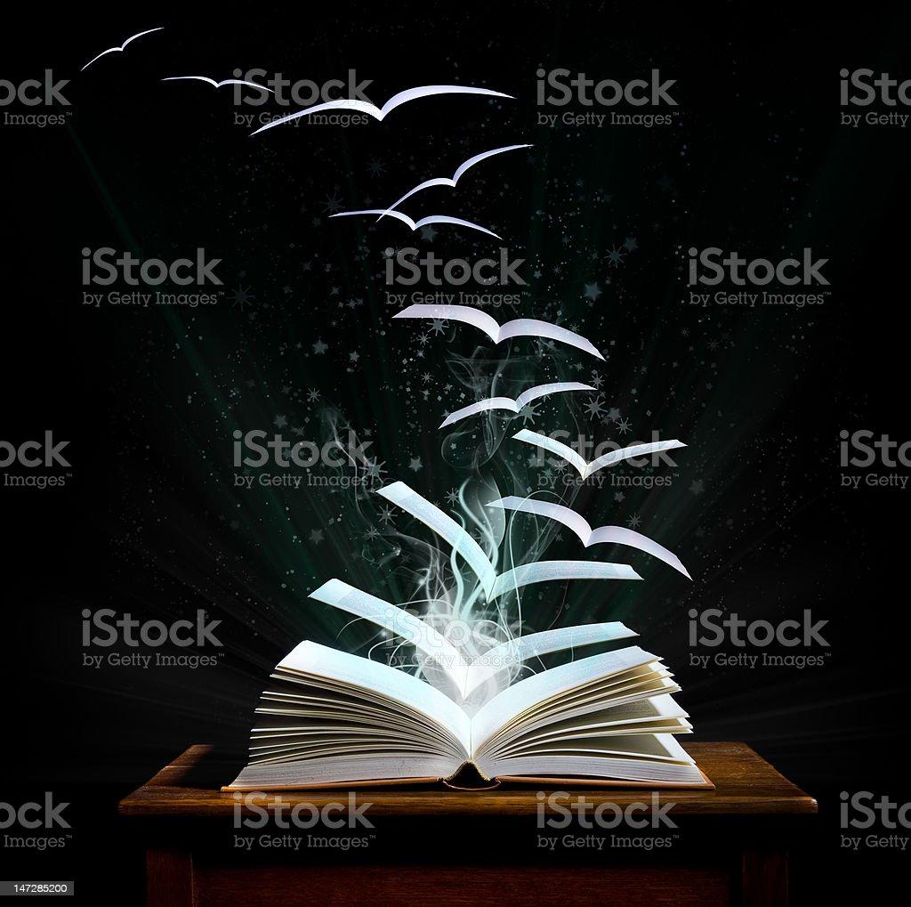 Magico mondo di lettura (Lobke colleghi - foto stock