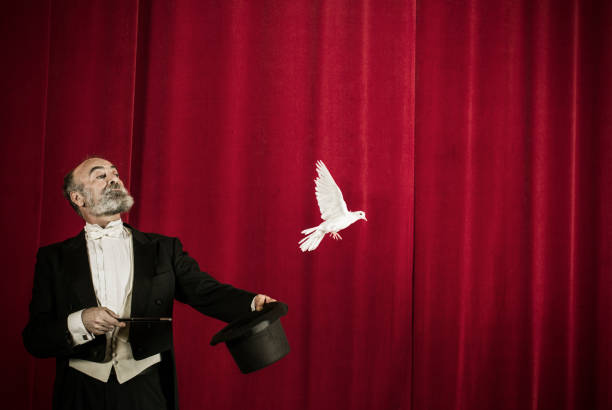 Magician trick with doves stock photo