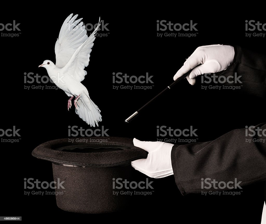 Magician trick with top hat and white dove stock photo